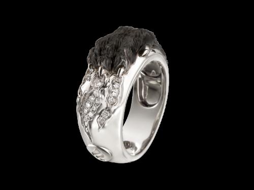 ring_belleza_interior_1_x