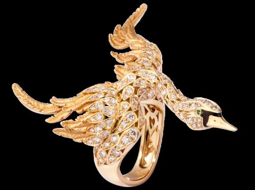 ring_cisne_1_x