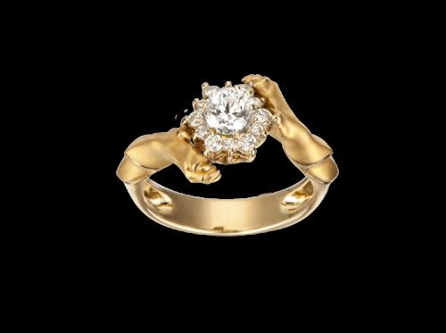 ring_custodia_3_x