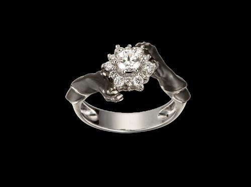 ring_custodia_4_x