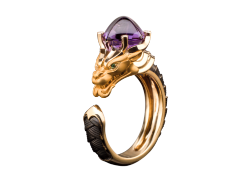 ring_guardian_1_x