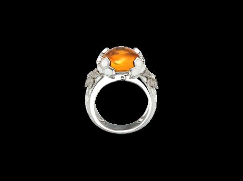 ring_panal_1_x