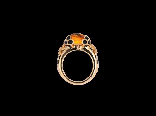ring_panal_2_x